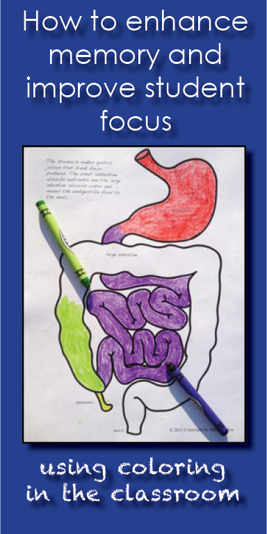 Benefits Of Coloring In The Classroom