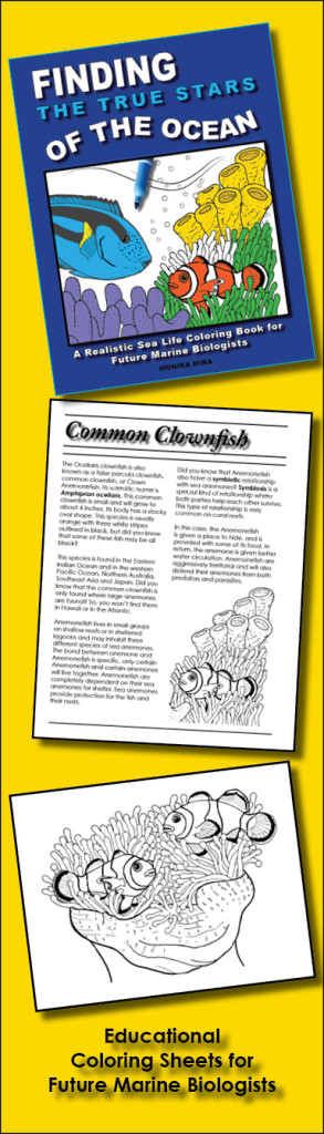 educational_COLORING_SHEETS_marine_biologist