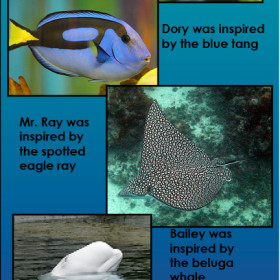 Scientific Facts about the Real Life Species that Inspired the Finding Dory Characters