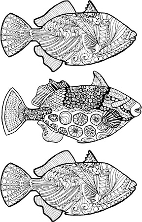Zentangle Shell Adult Coloring Page Triggerfish